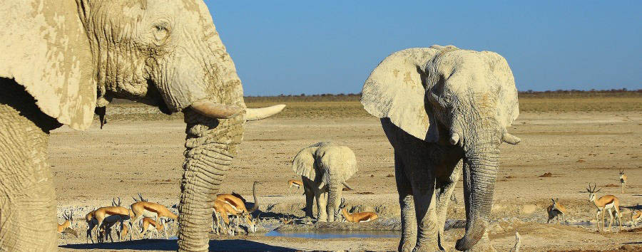 Alluring Namibia - Africa