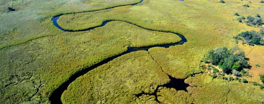 Botswana, smeraldo dacqua - Africa