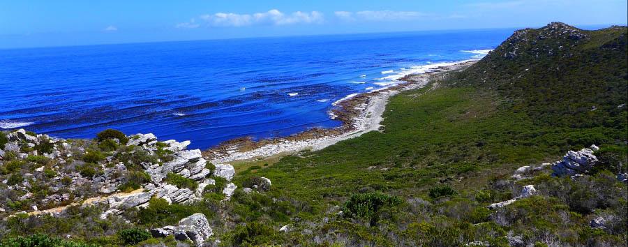 Explorer Bush & Beach