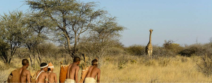 Il volto segreto del Botswana - Africa