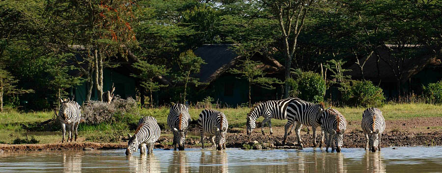 Kenya a 360°