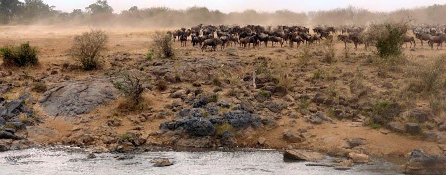 Kenya, Safari Classique