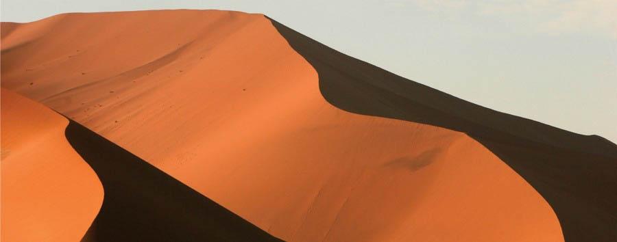 Namibia, dai pinguini ai leoni