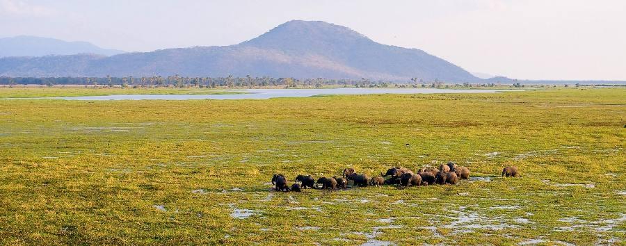 Simply Malawi