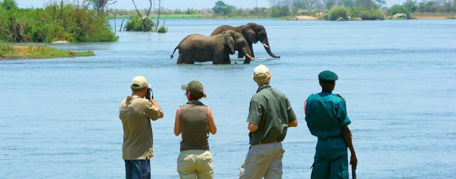 Sud Malawi safari e foreste - Africa