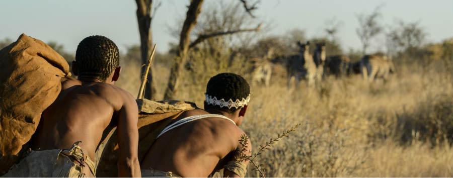 Viaggio nella terra dei San - Africa