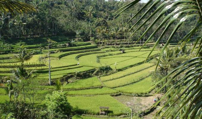 Java da Nord a Sud