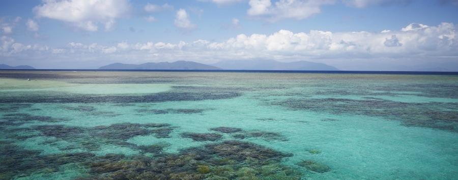 Mosaico australiano: Cairns