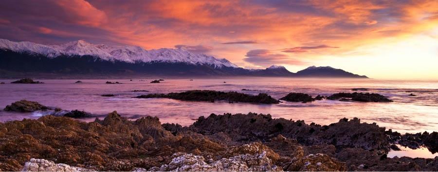 New Zealand Gourmet Escape