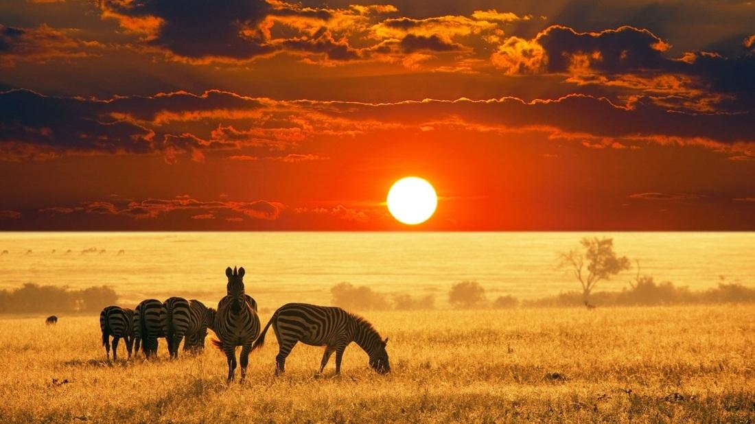 ATMOSFERE D'AFRICA E ZANZIBAR, SPECIALE CAPODANNO